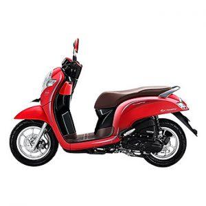 Xe Máy Nhập Khẩu Honda Scoopy 110 - Đỏ